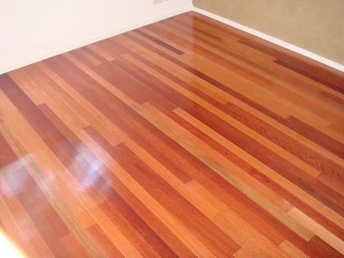 Blue Gum Contemporary Grade 60mm